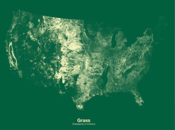 Grasslands in the U.S.